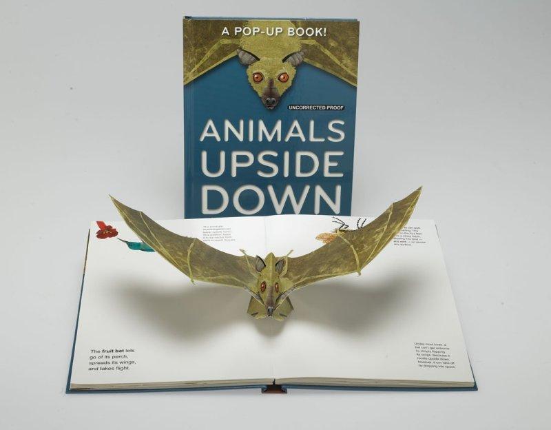 Animals Upside Down